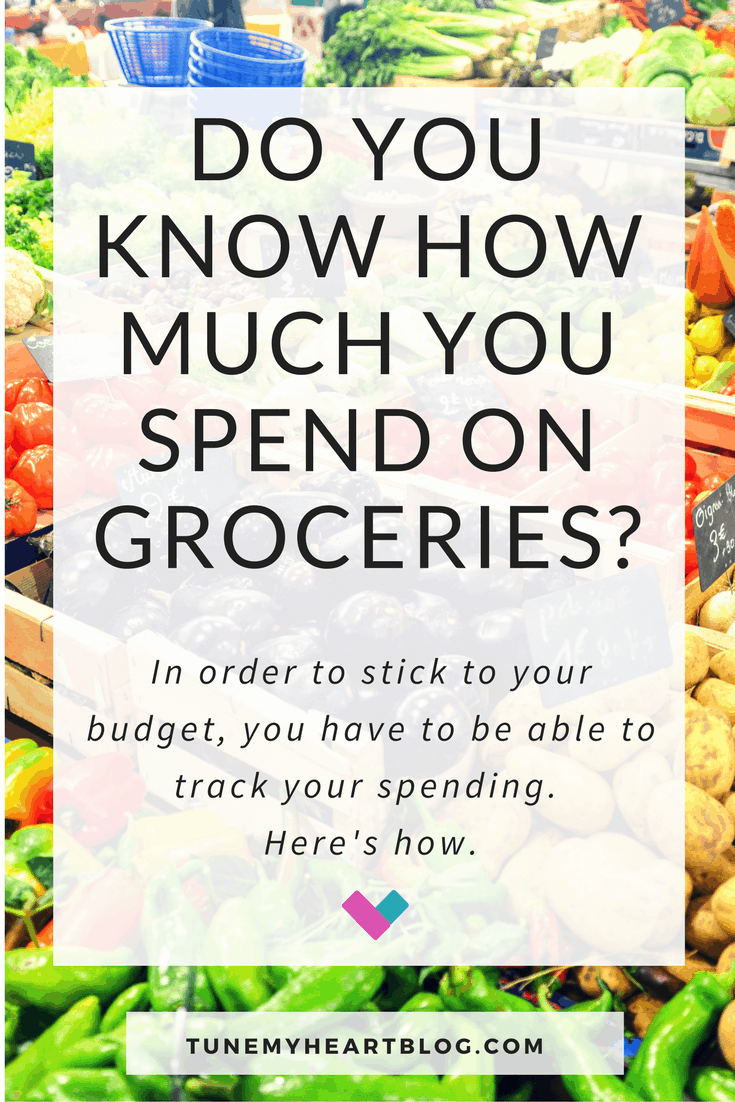 How to Track Your Grocery Spending | 2 Methods That Work Every Time